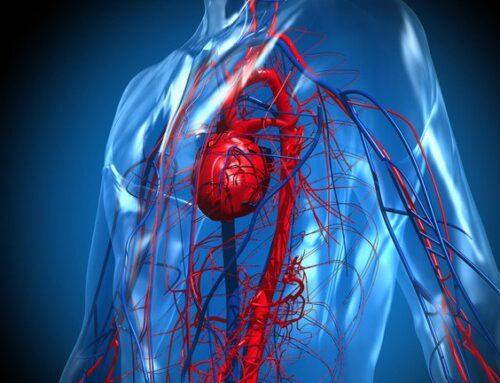El corazón por dentro luego del COVID-19